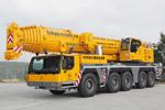 Mobile crane rental 100 t