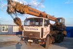 Mobile crane rental 25 t